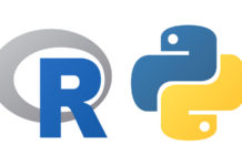 Which is the best programming language for data science careers, R or Python?