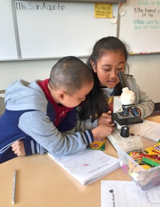 Tiger Woods Foundation's TGR Learning Lab students work with microscopes.