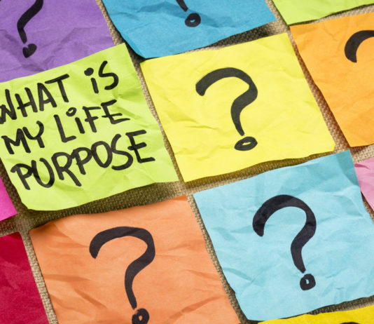 What is my life purpose question