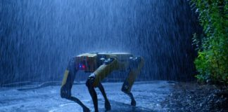 robo-dog Spot pictured at night in the rain