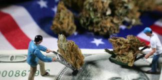 Mini figurines hauling marijuana over money and American flag