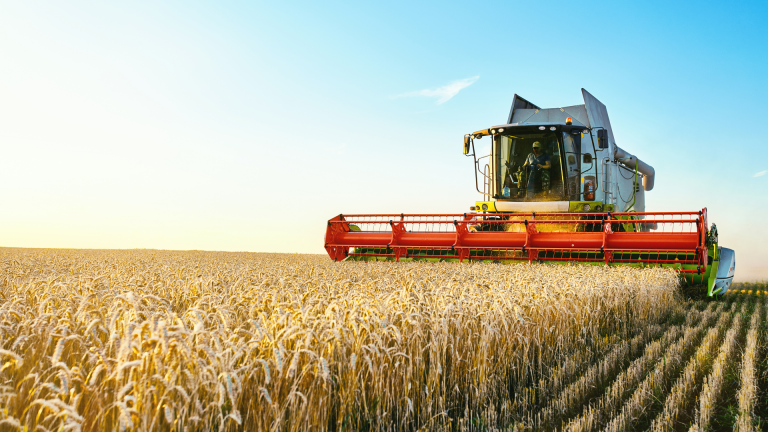 Back to Work: Opportunities in agriculture, infrastructure, and health care